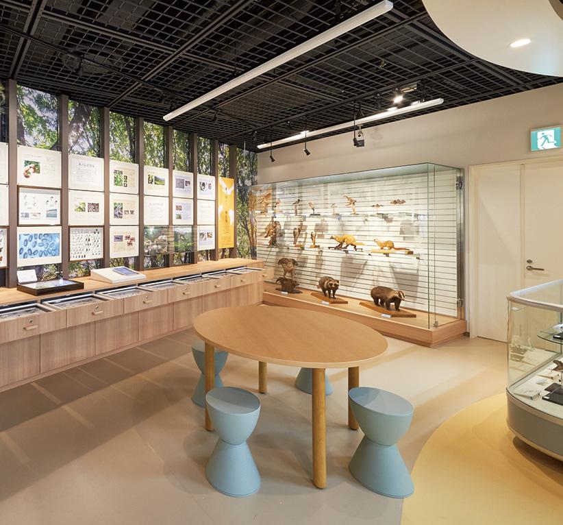 氷ノ山の自然「学習展示ルーム」